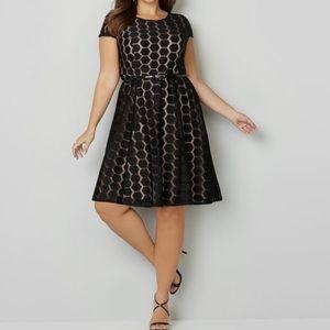 Avenue lace belt dress